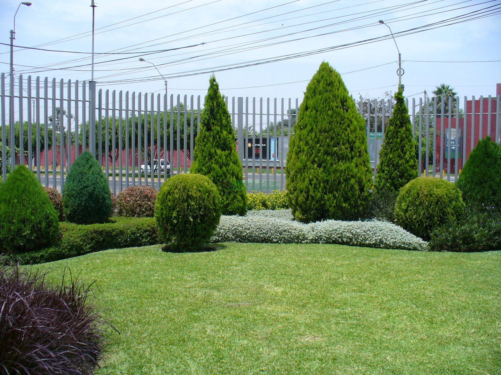 Dise o de jardines for Diseno de jardines uruguay